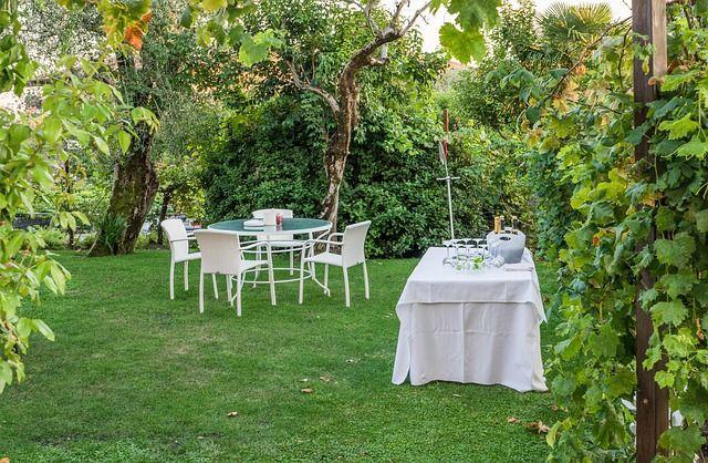 Garden party w ogrodzie