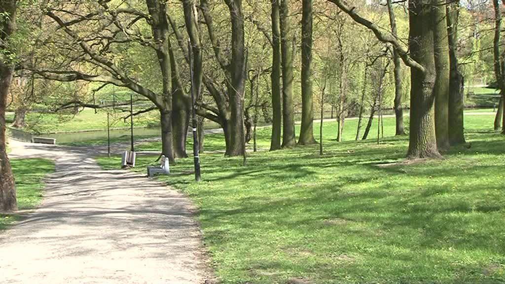 Park Sienkiewicza wypięknieje!