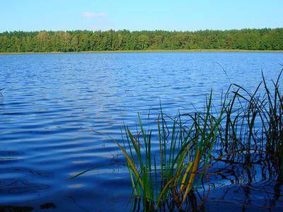 To nieprawdopodobne jakie tajemnice kryje dno jeziora leżącego na terenie gminy Włocławek!